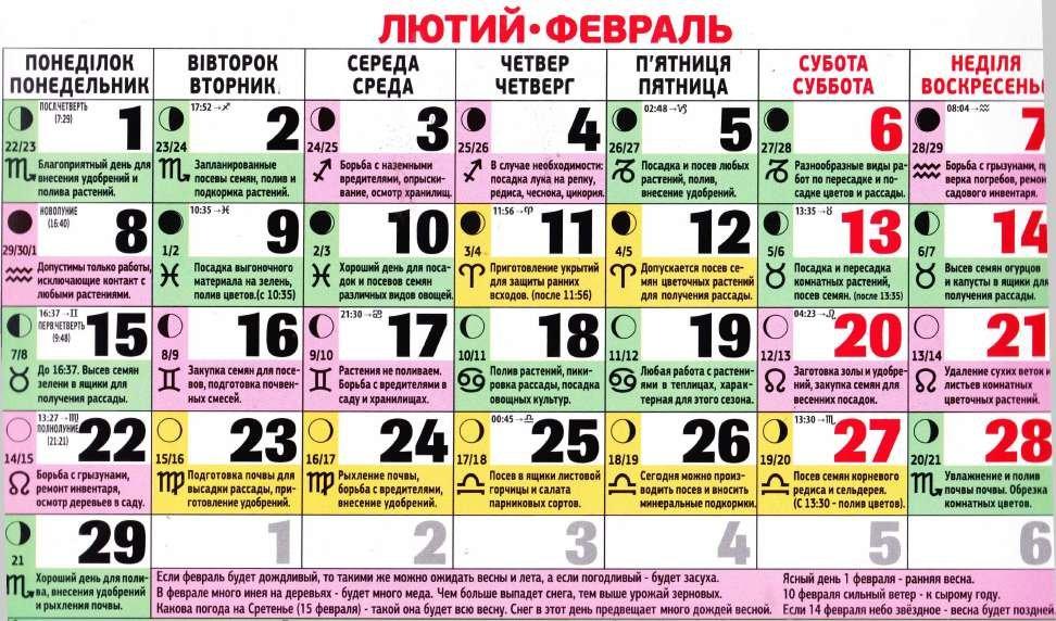 Посівний календар на лютий 2016 року