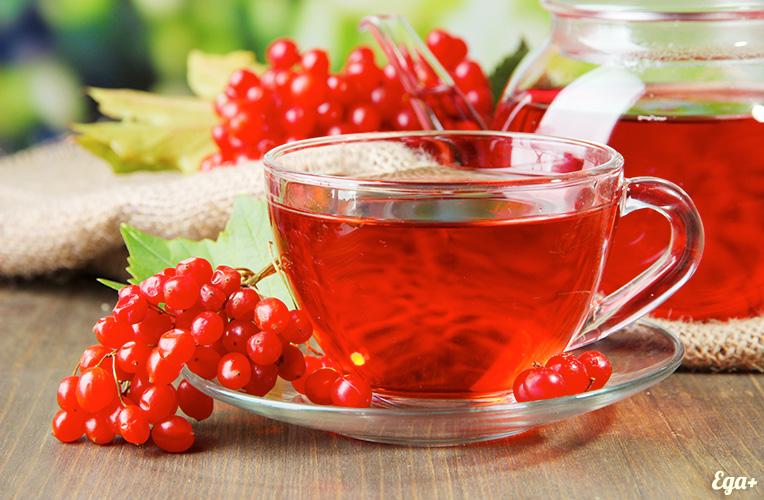 Чай з калини смачний і надзвичайно корисний