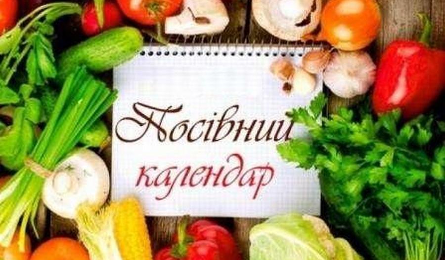 Чи варто довіряти рекомендаціям посівного календаря